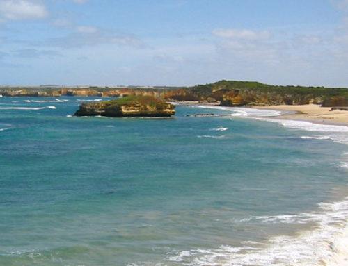 Rāhui – Bay of Islands