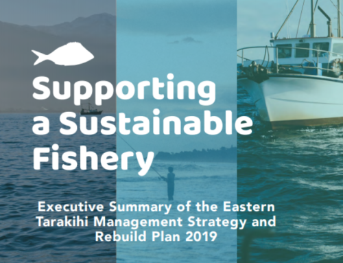 Eastern Tarakihi Management Strategy and Rebuild Plan