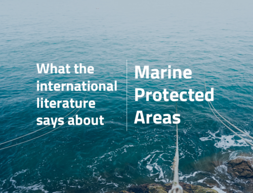 What the international literature says about Marine Protected Areas
