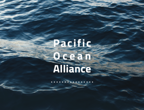 Taking part in the Pacific Ocean Alliance