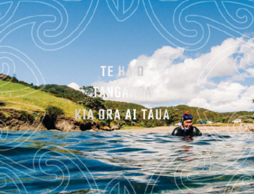 Te Ohu Kaimoana Annual Report 2019