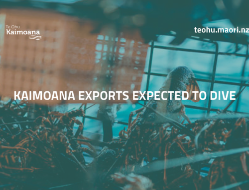 Kaimoana exports expected to dive
