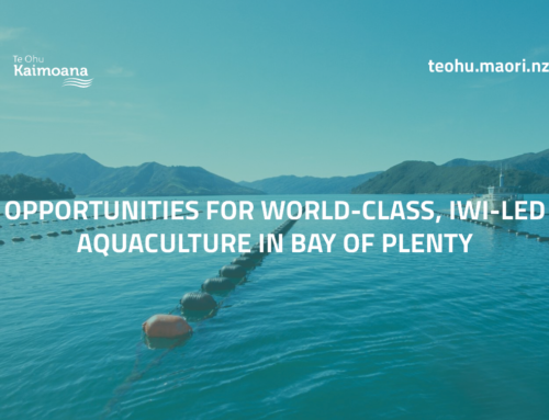 Opportunities for world-class, Iwi-led aquaculture in Bay of Plenty