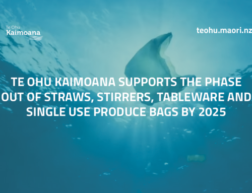 Te Ohu Kaimoana supports the phase-out of plastics for the health of Tangaroa